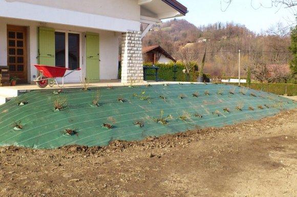 Un jardin impeccable en été comme en hiver Verrens-arvey
