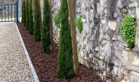 Plantation alignement de cyprès totems avec pose bordure et paillage pouzzolane