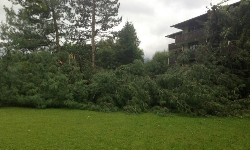 Casse-pin-orage-vent Megève