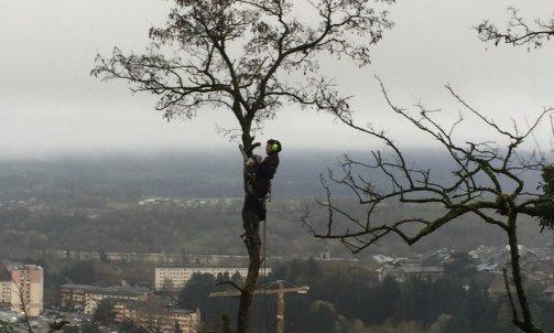 Démontage arbre 2  Mercury